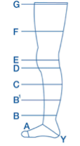 Copression - diagram of leg